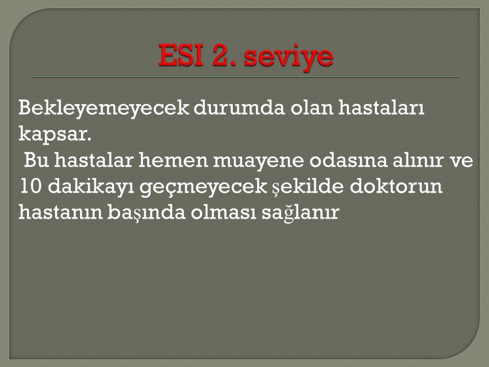 ESI 2. seviye