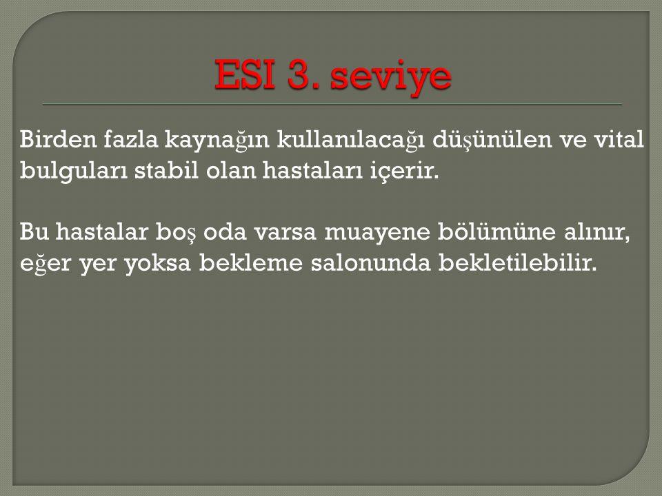 ESI 3. seviye