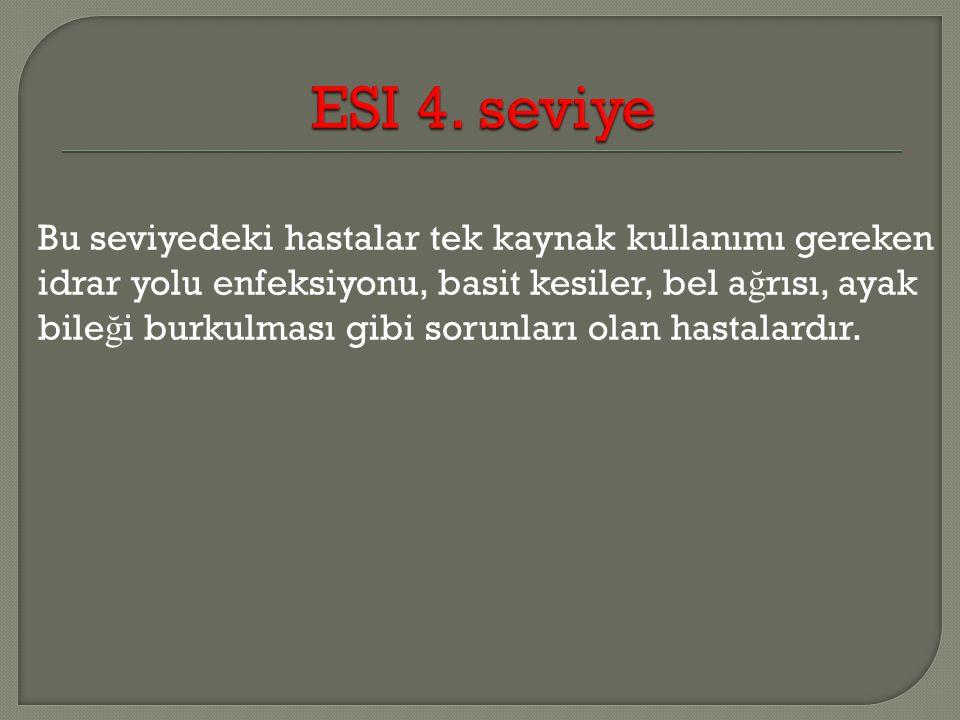 ESI 4. seviye