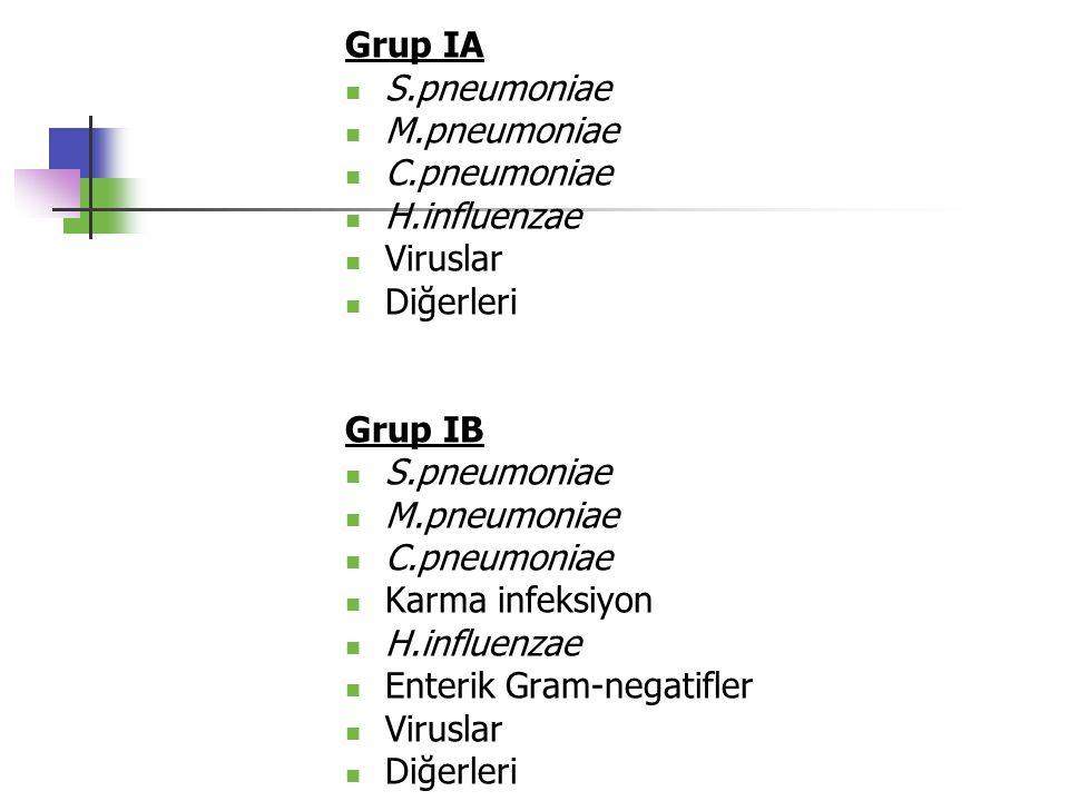 Grup IA S.pneumoniae. M.pneumoniae. C.pneumoniae. H.influenzae. Viruslar. Diğerleri. Grup IB.