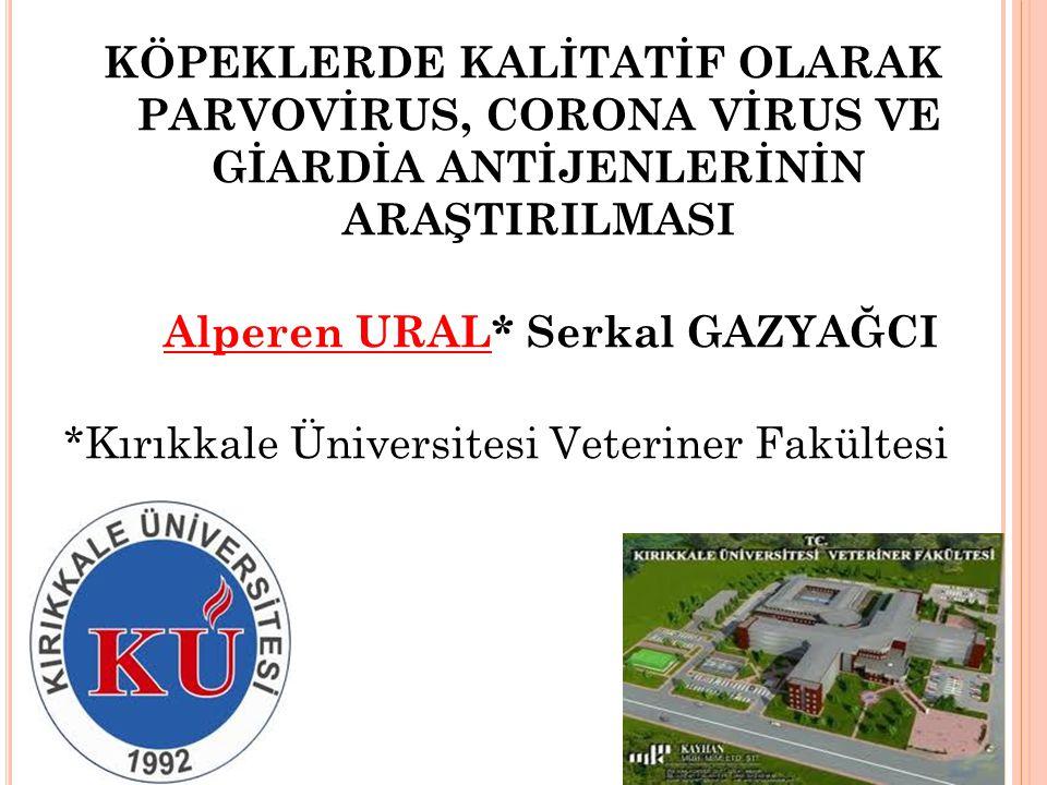 *Kırıkkale Üniversitesi Veteriner Fakültesi