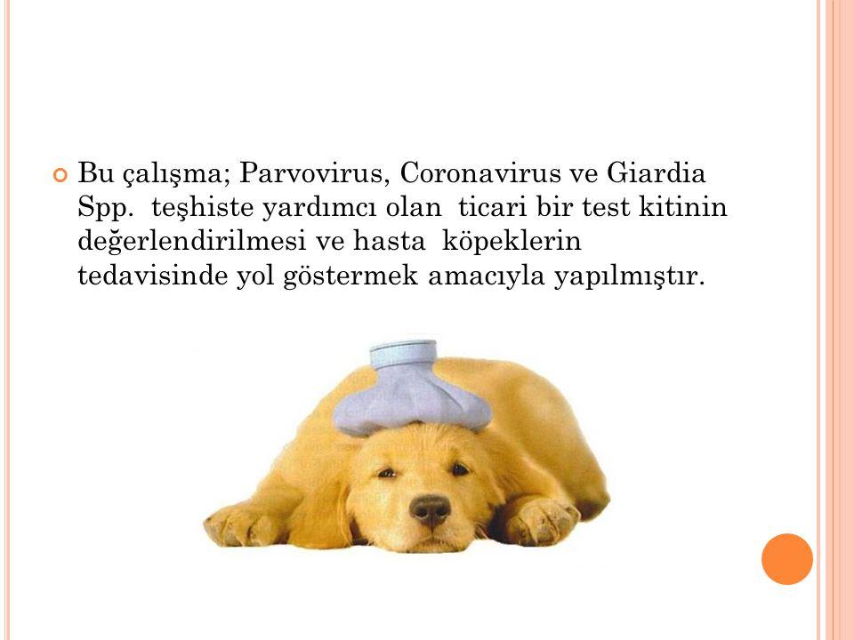 Bu çalışma; Parvovirus, Coronavirus ve Giardia Spp