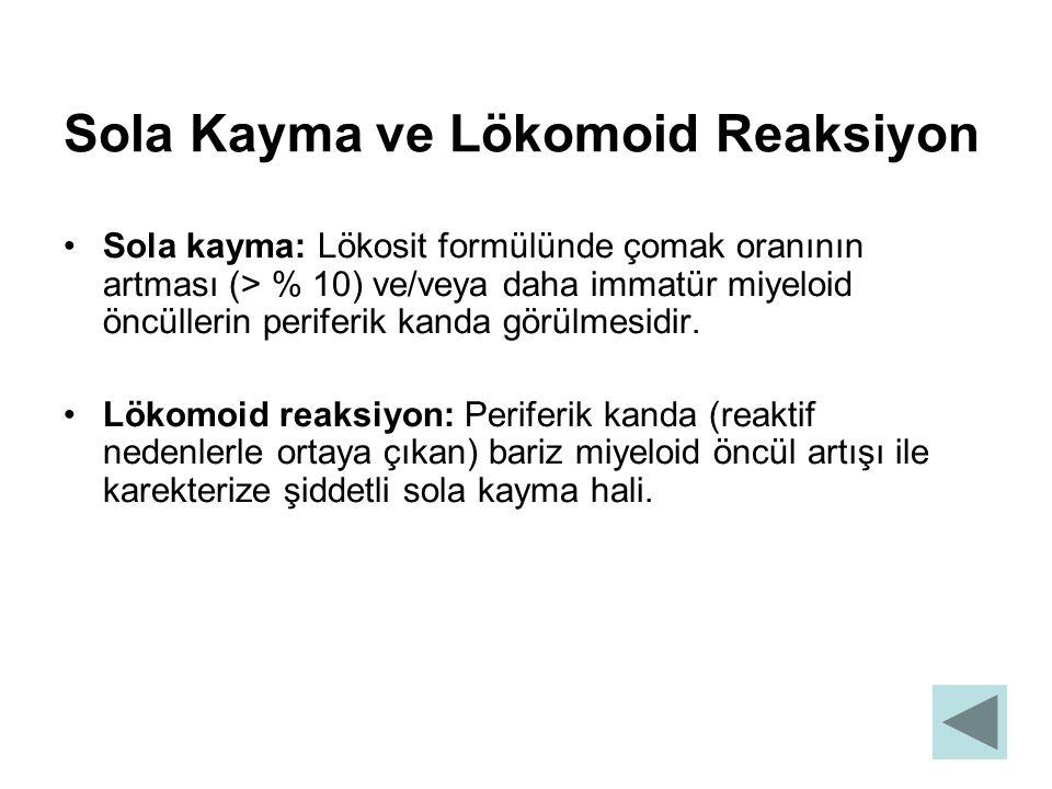Sola Kayma ve Lökomoid Reaksiyon