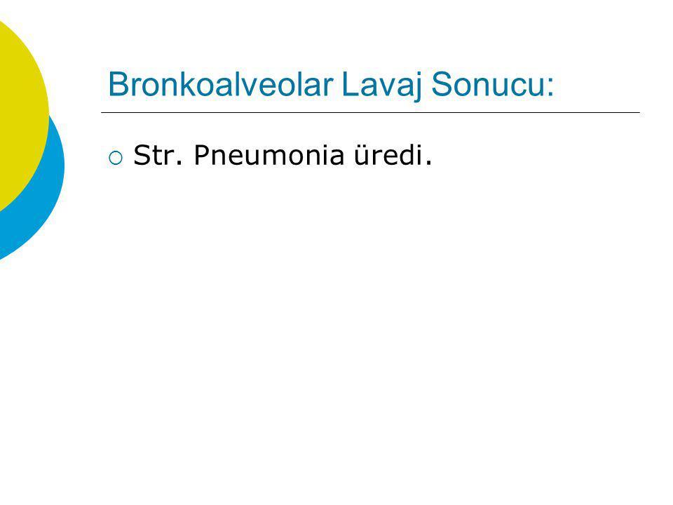 Bronkoalveolar Lavaj Sonucu: