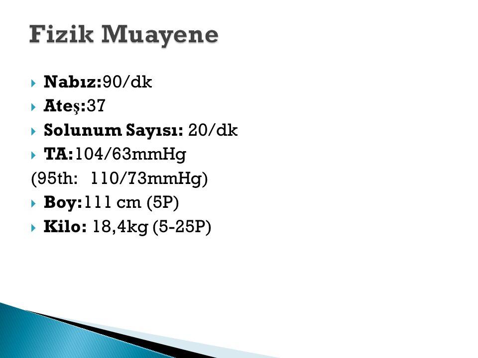 Fizik Muayene Nabız:90/dk Ateş:37 Solunum Sayısı: 20/dk TA:104/63mmHg