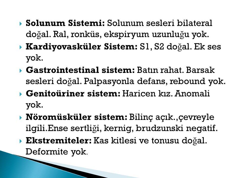 Solunum Sistemi: Solunum sesleri bilateral doğal