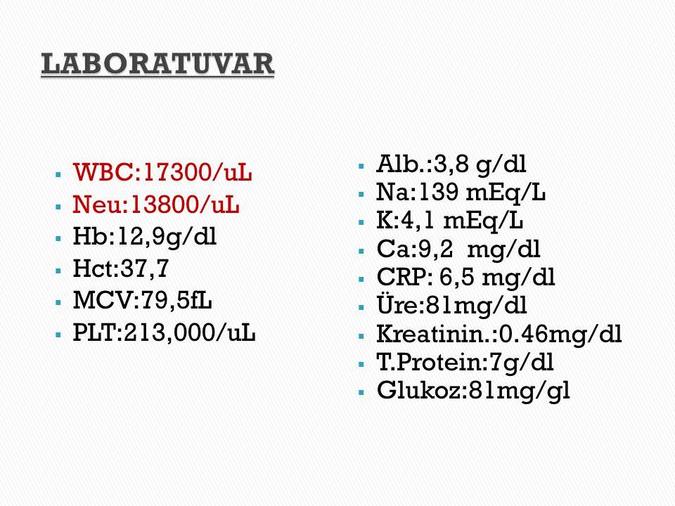 LABORATUVAR WBC:17300/uL Neu:13800/uL Alb.:3,8 g/dl Hb:12,9g/dl