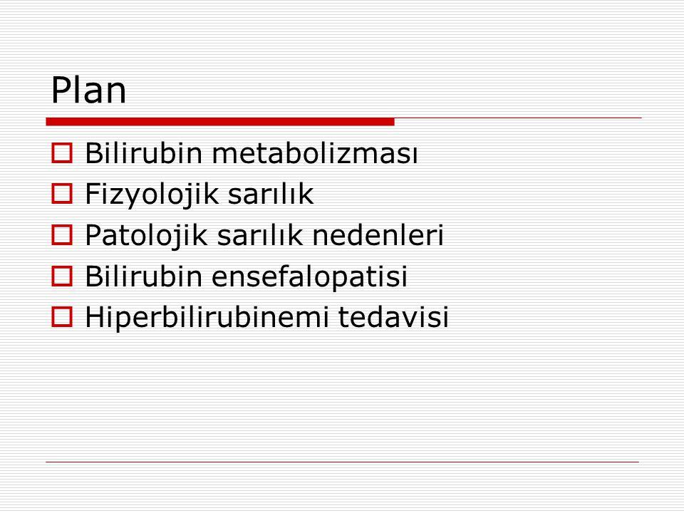 Plan Bilirubin metabolizması Fizyolojik sarılık
