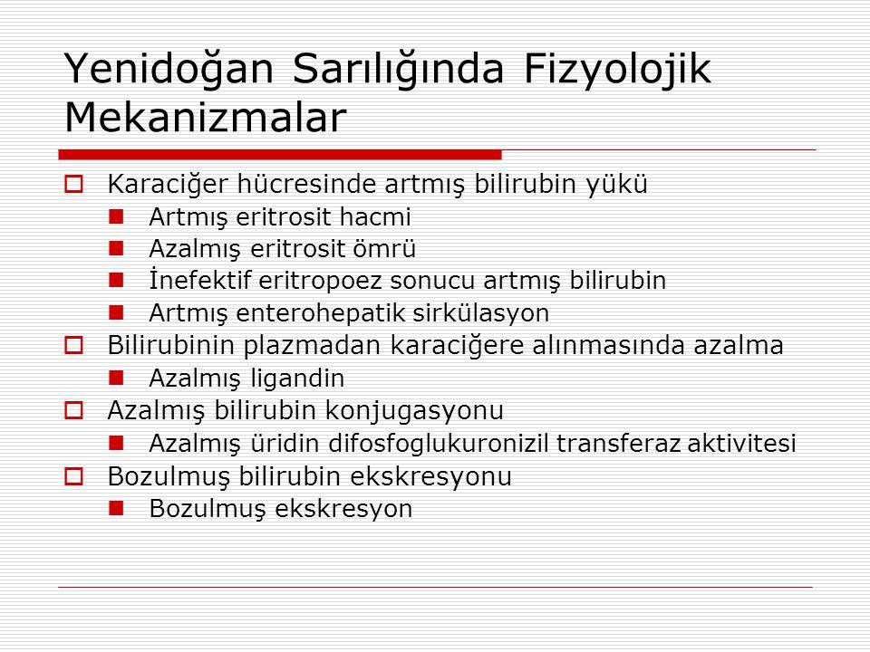 Yenidoğan Sarılığında Fizyolojik Mekanizmalar