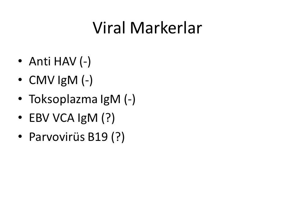 Viral Markerlar Anti HAV (-) CMV IgM (-) Toksoplazma IgM (-)