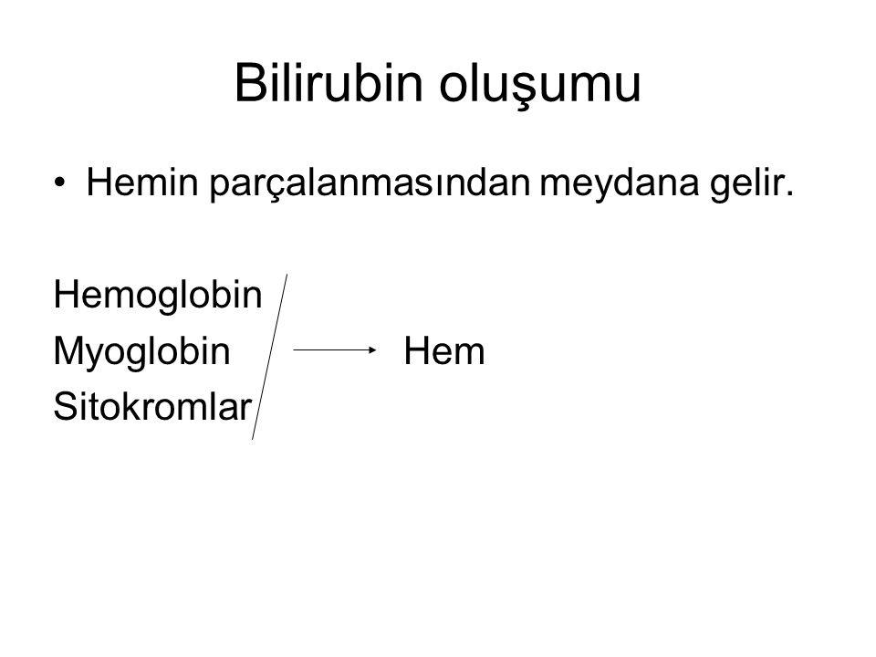 Bilirubin oluşumu Hemin parçalanmasından meydana gelir. Hemoglobin