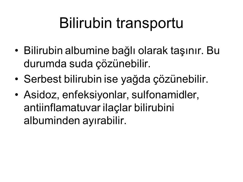 Bilirubin transportu Bilirubin albumine bağlı olarak taşınır. Bu durumda suda çözünebilir. Serbest bilirubin ise yağda çözünebilir.