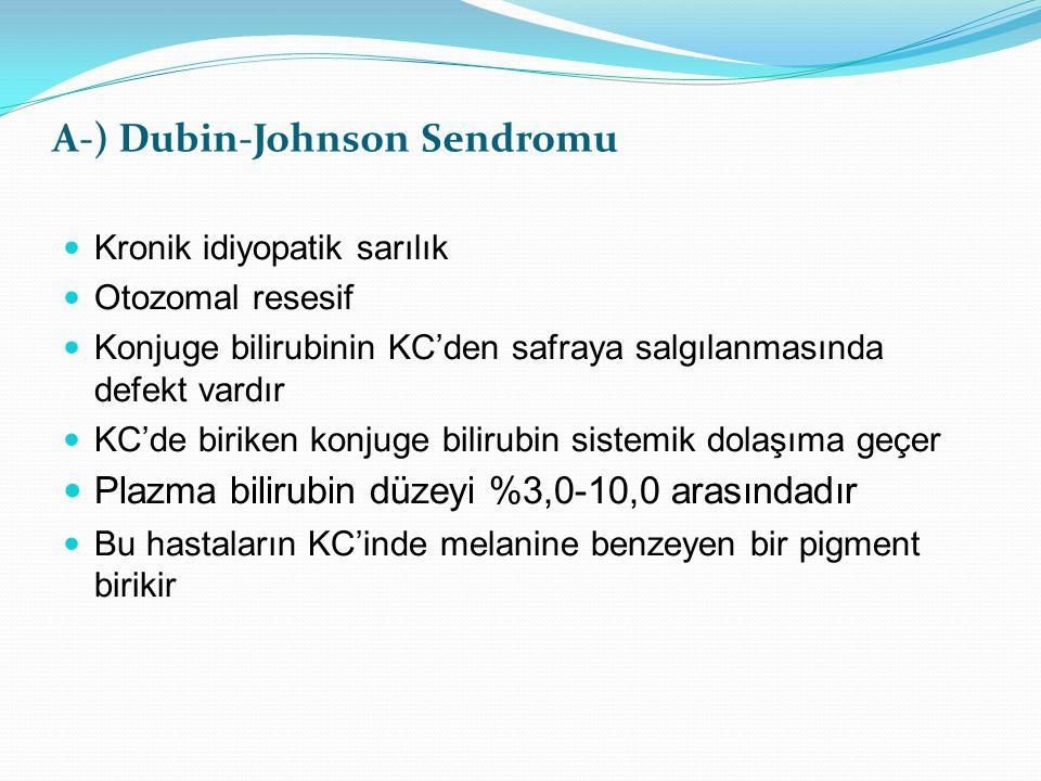 A-) Dubin-Johnson Sendromu