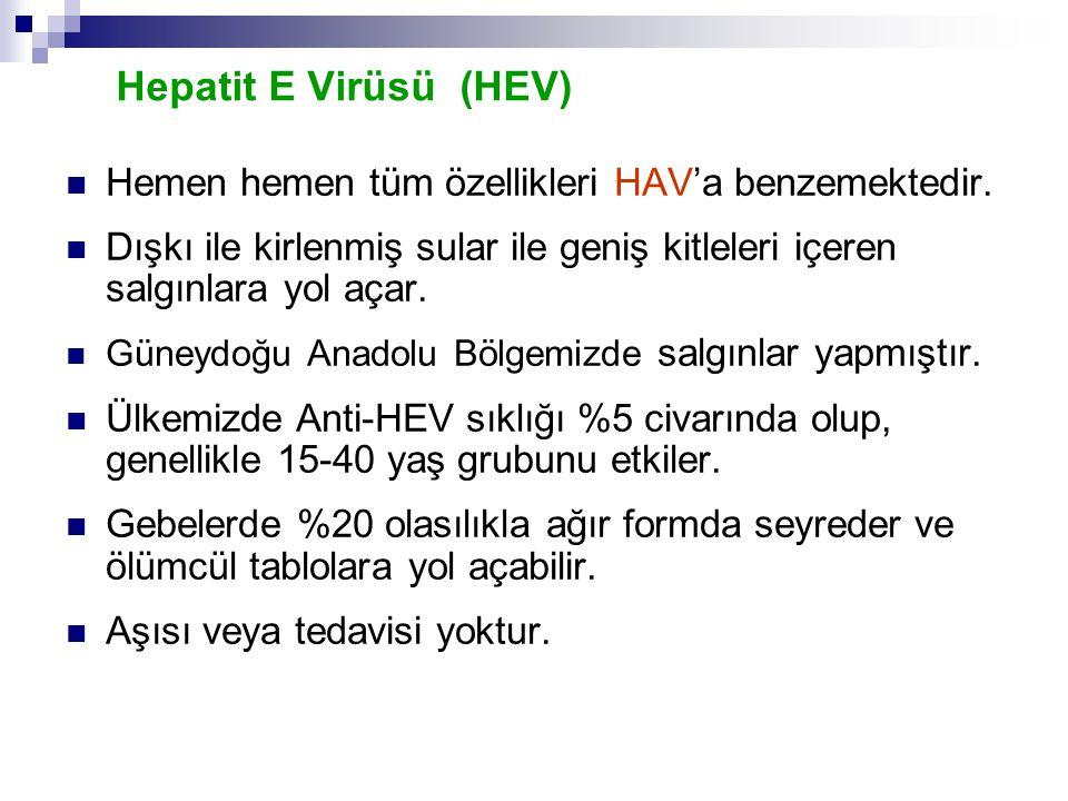 Hepatit E Virüsü (HEV) Hemen hemen tüm özellikleri HAV'a benzemektedir. Dışkı ile kirlenmiş sular ile geniş kitleleri içeren salgınlara yol açar.