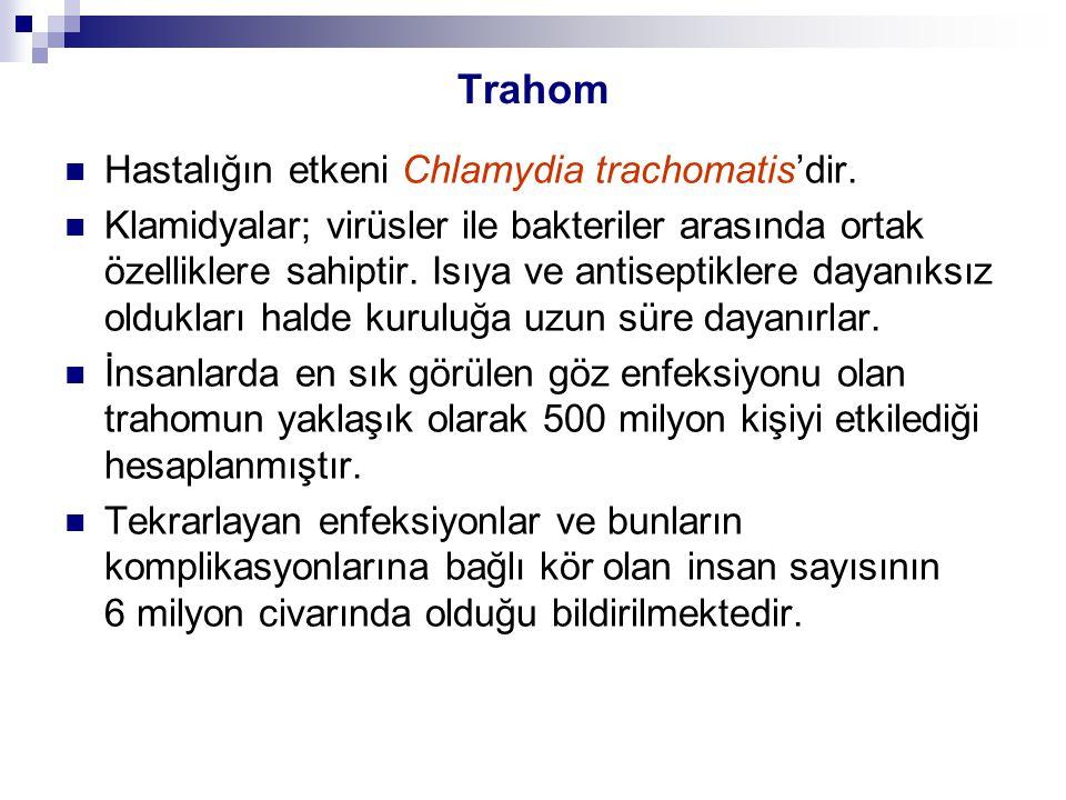 Trahom Hastalığın etkeni Chlamydia trachomatis'dir.