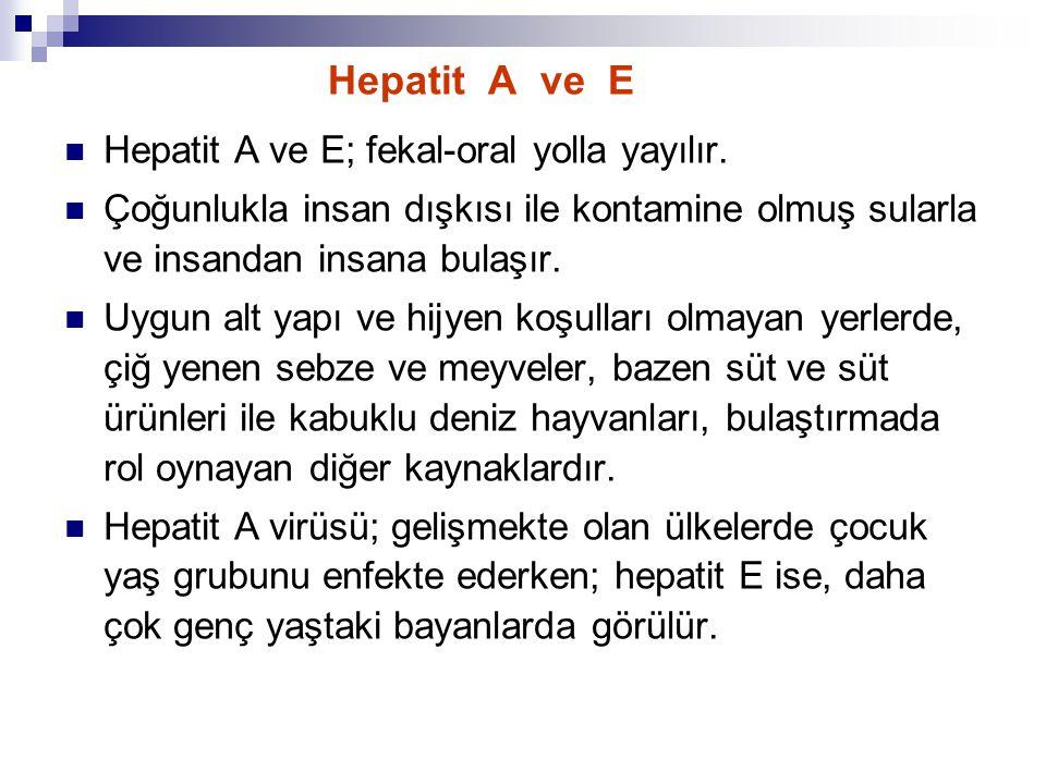 Hepatit A ve E Hepatit A ve E; fekal-oral yolla yayılır.