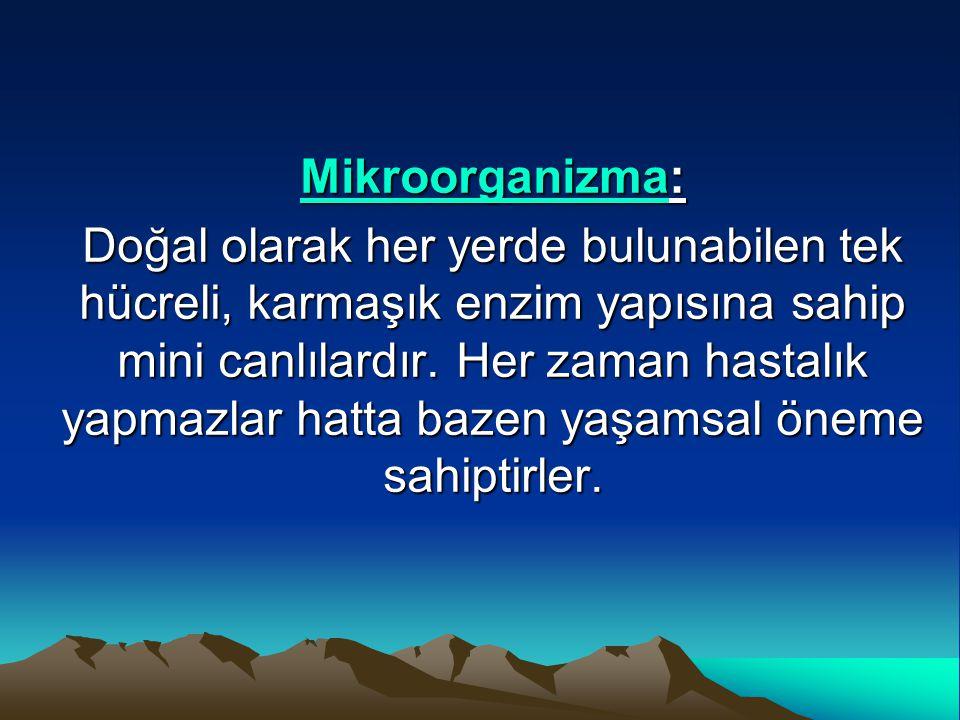 Mikroorganizma: