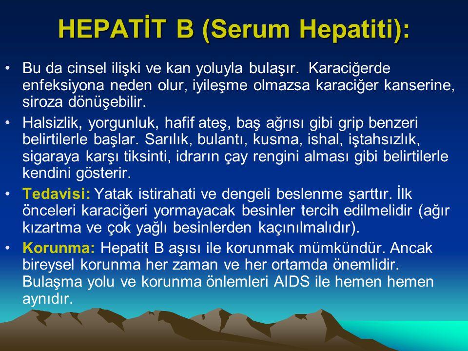 HEPATİT B (Serum Hepatiti):