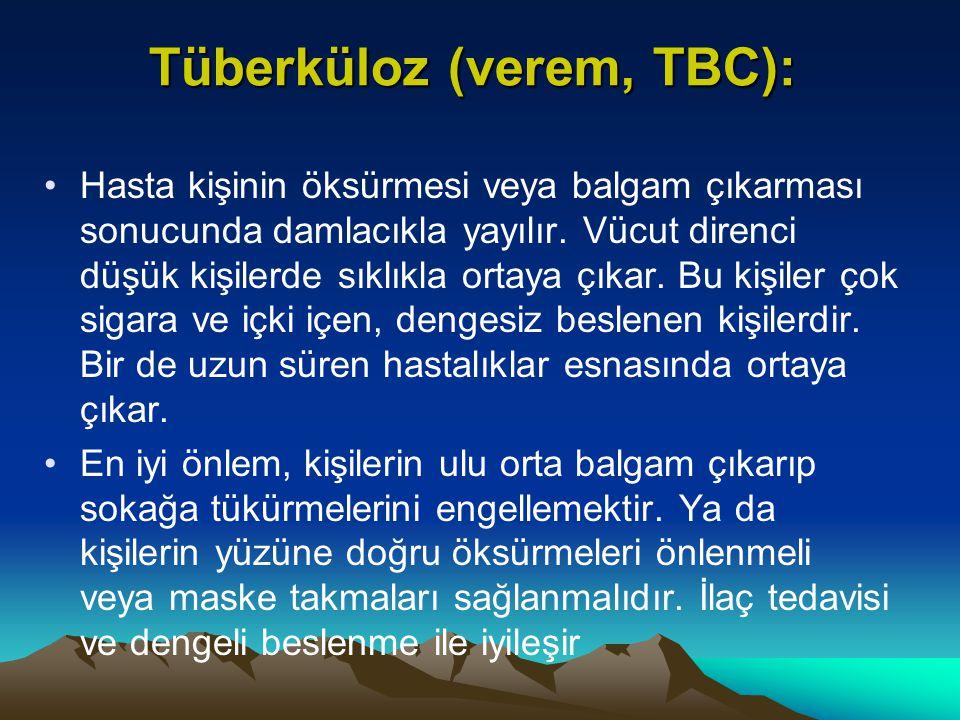 Tüberküloz (verem, TBC):