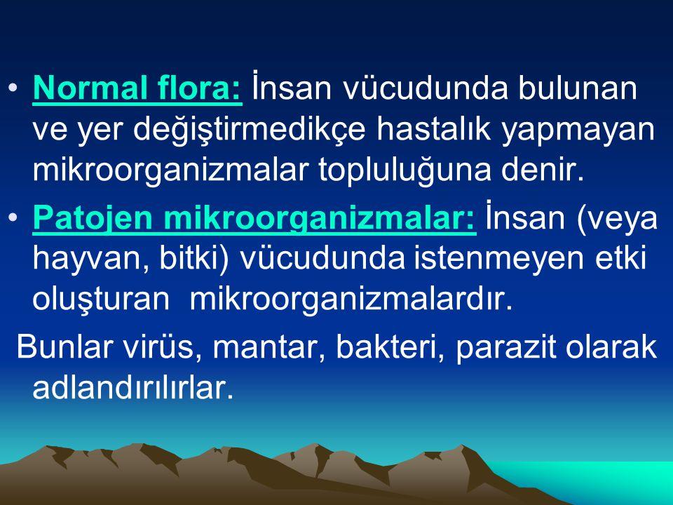 Normal flora: İnsan vücudunda bulunan ve yer değiştirmedikçe hastalık yapmayan mikroorganizmalar topluluğuna denir.