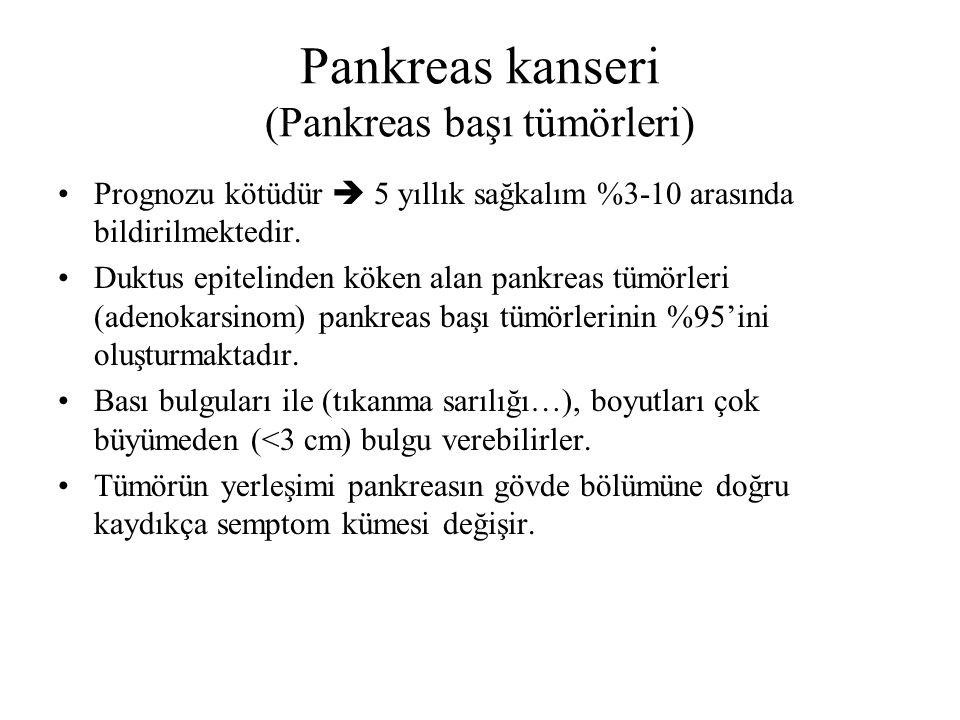 Pankreas kanseri (Pankreas başı tümörleri)