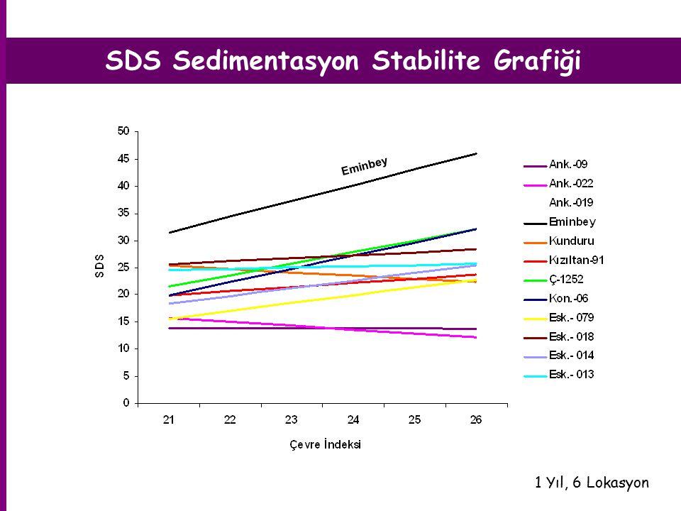 SDS Sedimentasyon Stabilite Grafiği