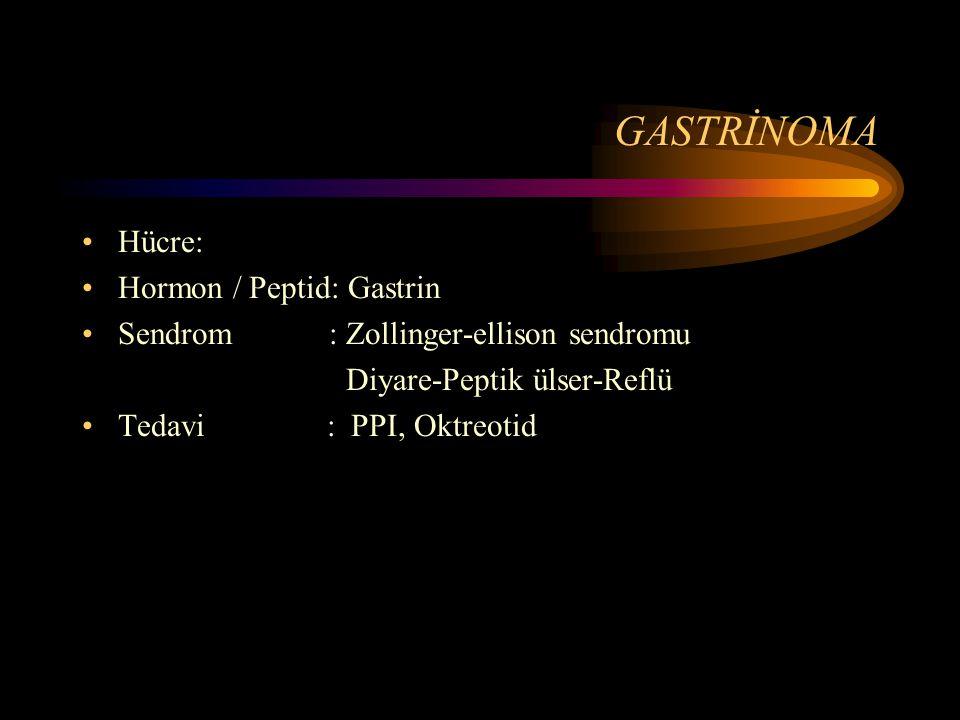 GASTRİNOMA Hücre: Hormon / Peptid: Gastrin