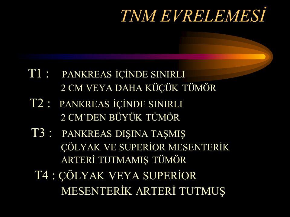 TNM EVRELEMESİ T1 : PANKREAS İÇİNDE SINIRLI