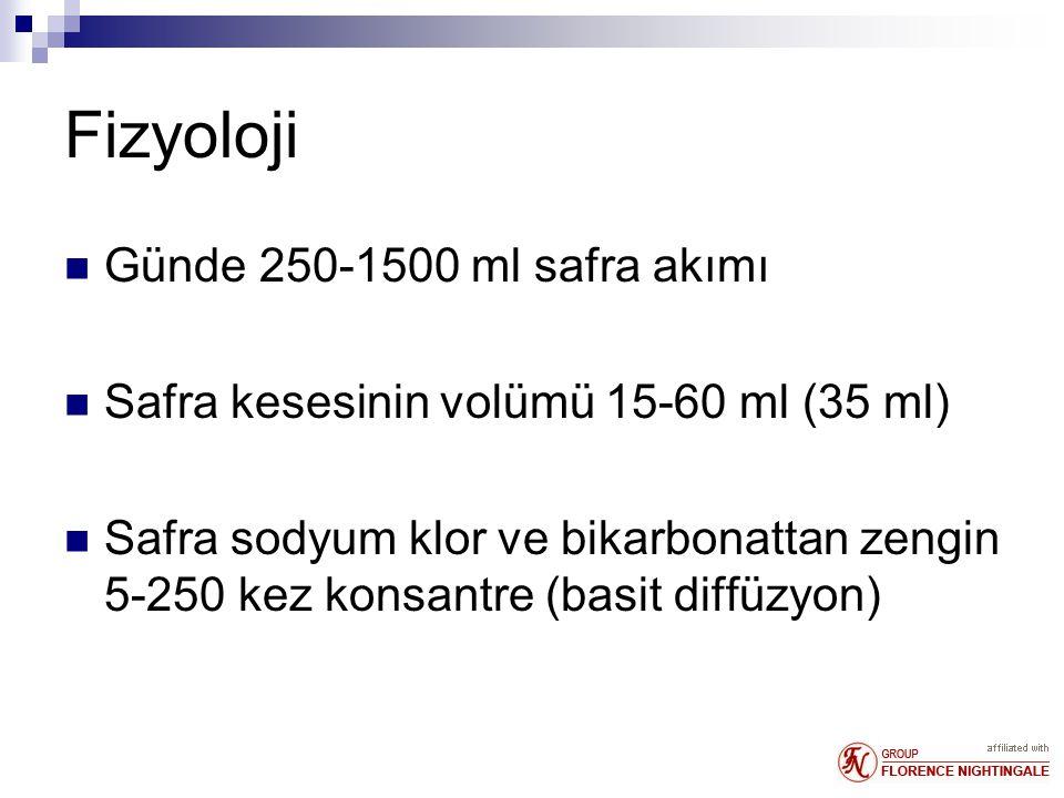 Fizyoloji Günde 250-1500 ml safra akımı