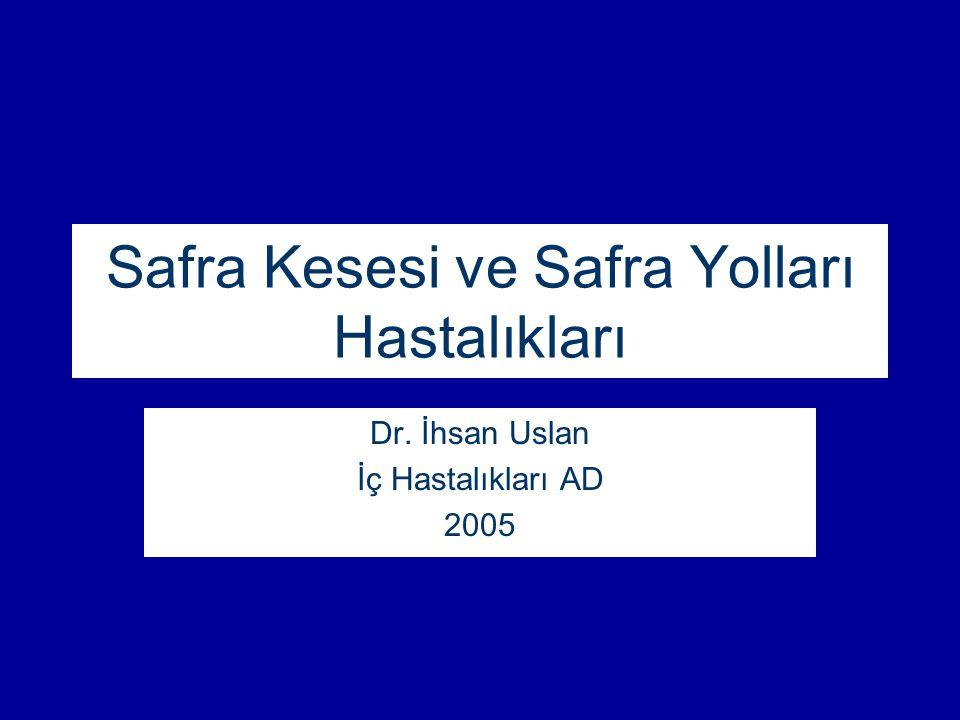 Safra Kesesi ve Safra Yolları Hastalıkları