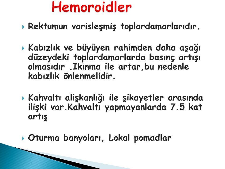 Hemoroidler Rektumun varisleşmiş toplardamarlarıdır.