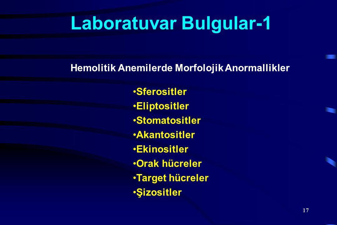 Laboratuvar Bulgular-1