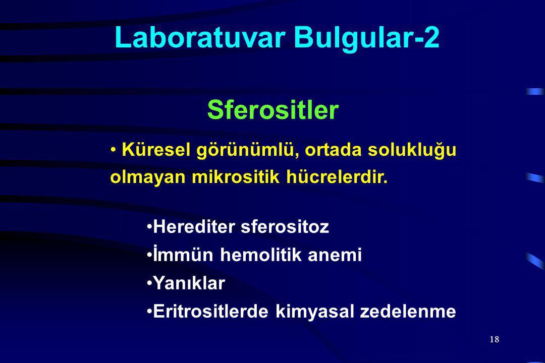 Laboratuvar Bulgular-2
