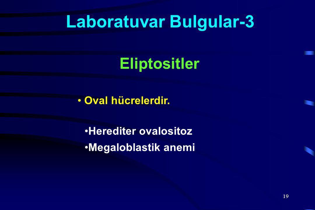 Laboratuvar Bulgular-3