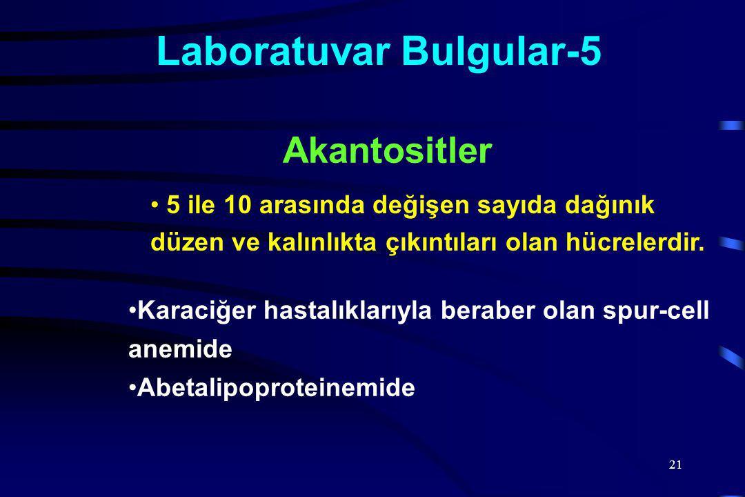 Laboratuvar Bulgular-5