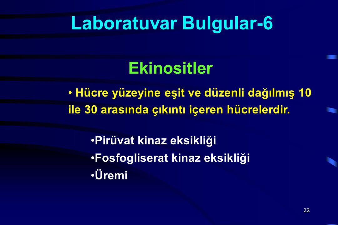 Laboratuvar Bulgular-6