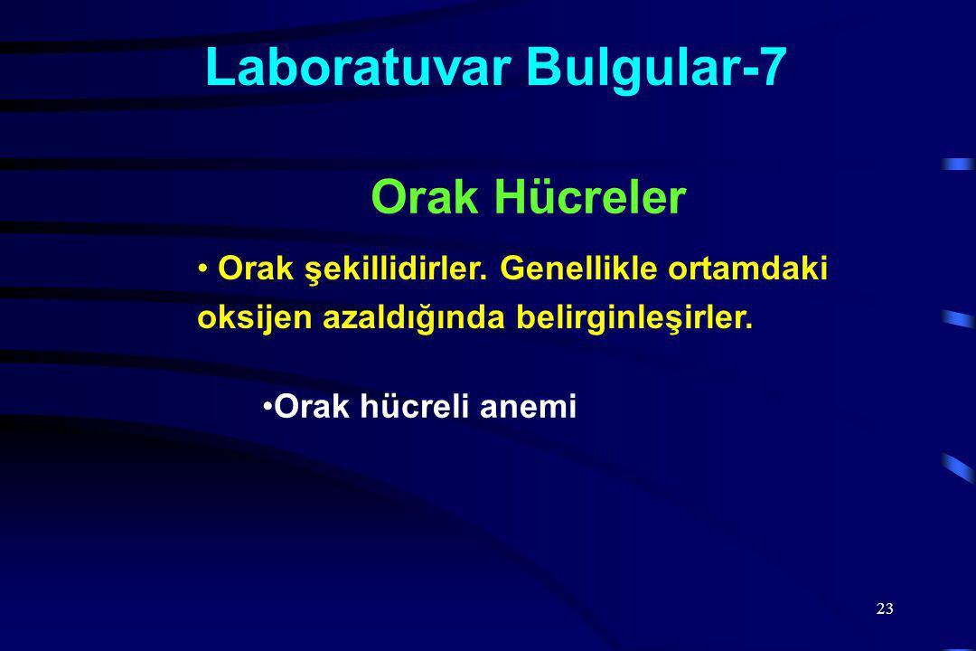 Laboratuvar Bulgular-7