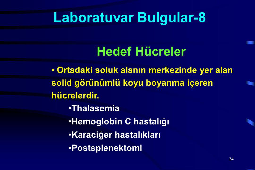 Laboratuvar Bulgular-8