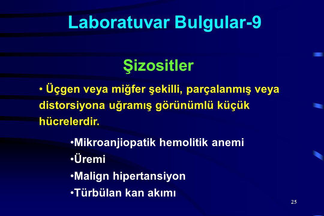 Laboratuvar Bulgular-9