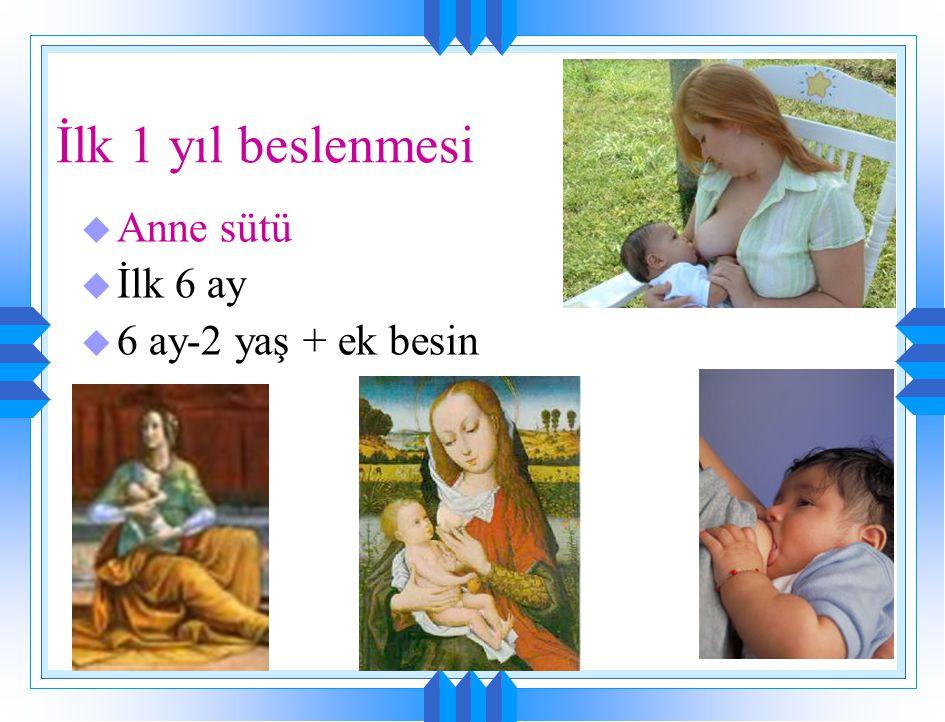 İlk 1 yıl beslenmesi Anne sütü İlk 6 ay 6 ay-2 yaş + ek besin
