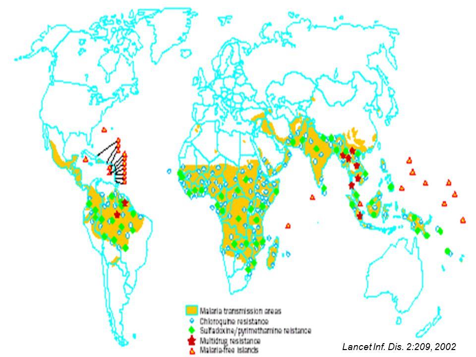 Lancet Inf. Dis. 2:209, 2002