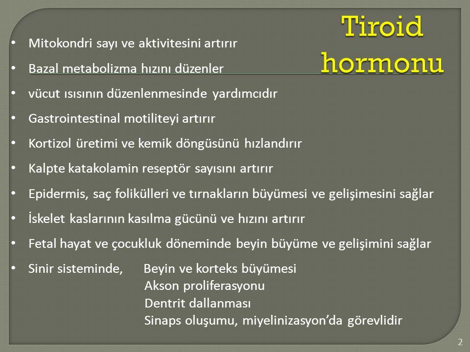 Tiroid hormonu Mitokondri sayı ve aktivitesini artırır