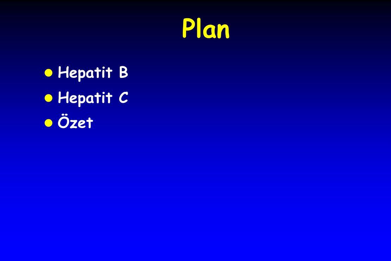 Plan Hepatit B Hepatit C Özet