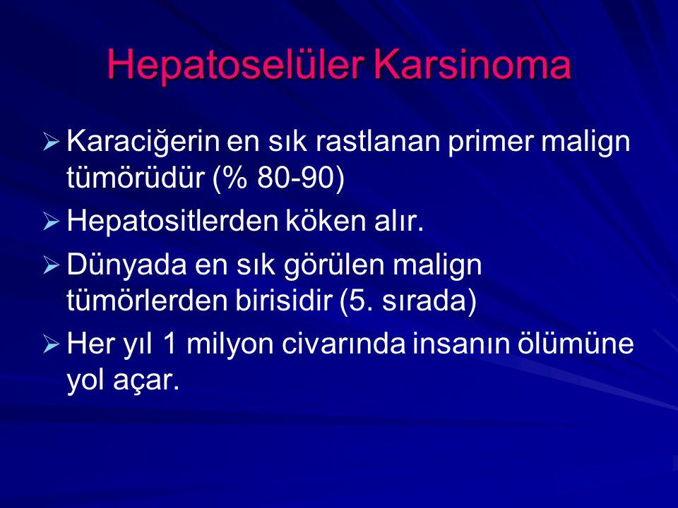 Hepatoselüler Karsinoma