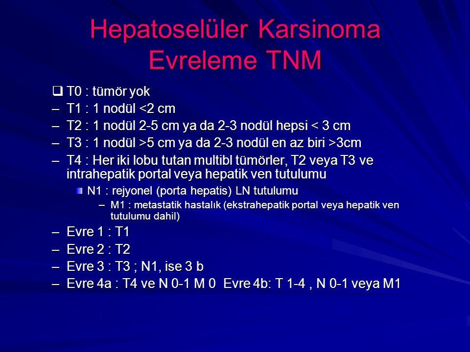 Hepatoselüler Karsinoma Evreleme TNM