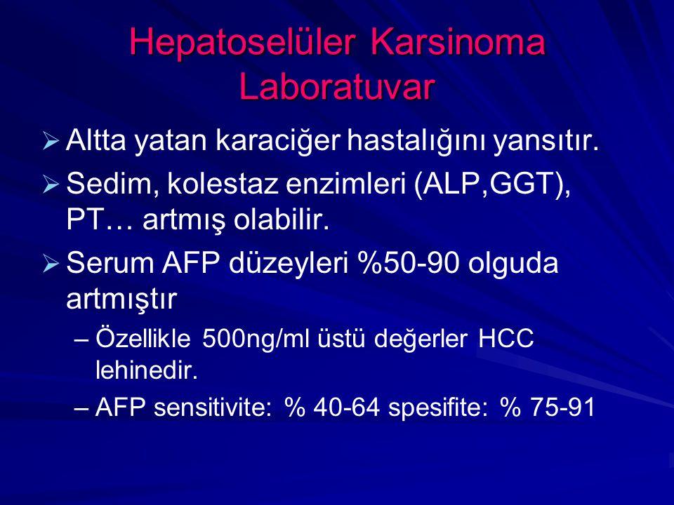 Hepatoselüler Karsinoma Laboratuvar