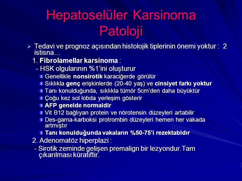 Hepatoselüler Karsinoma Patoloji