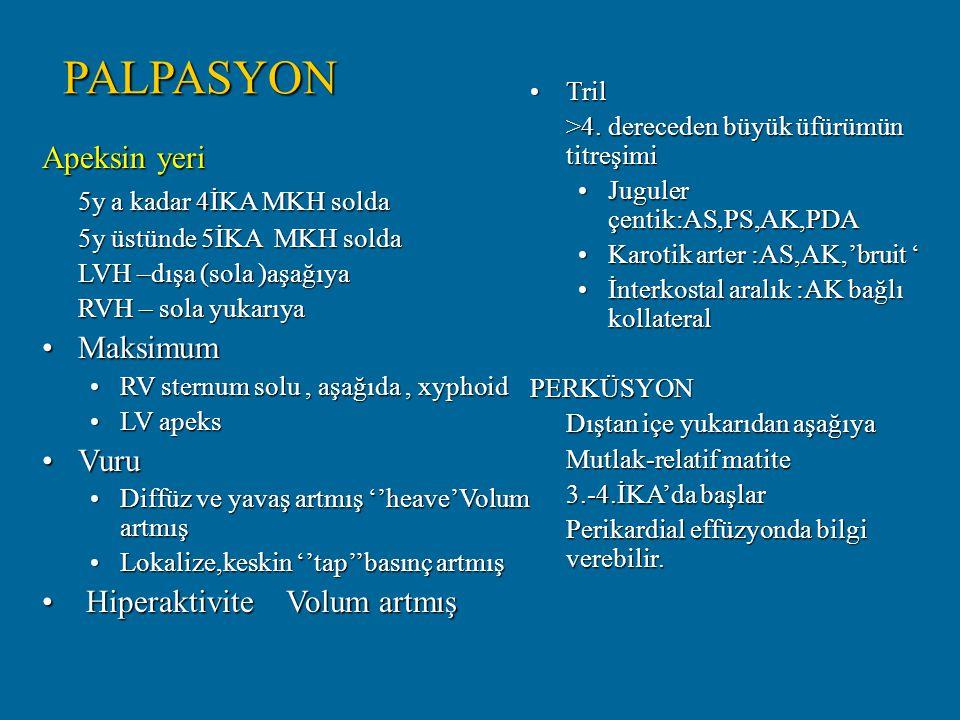 PALPASYON Apeksin yeri 5y a kadar 4İKA MKH solda Maksimum Vuru