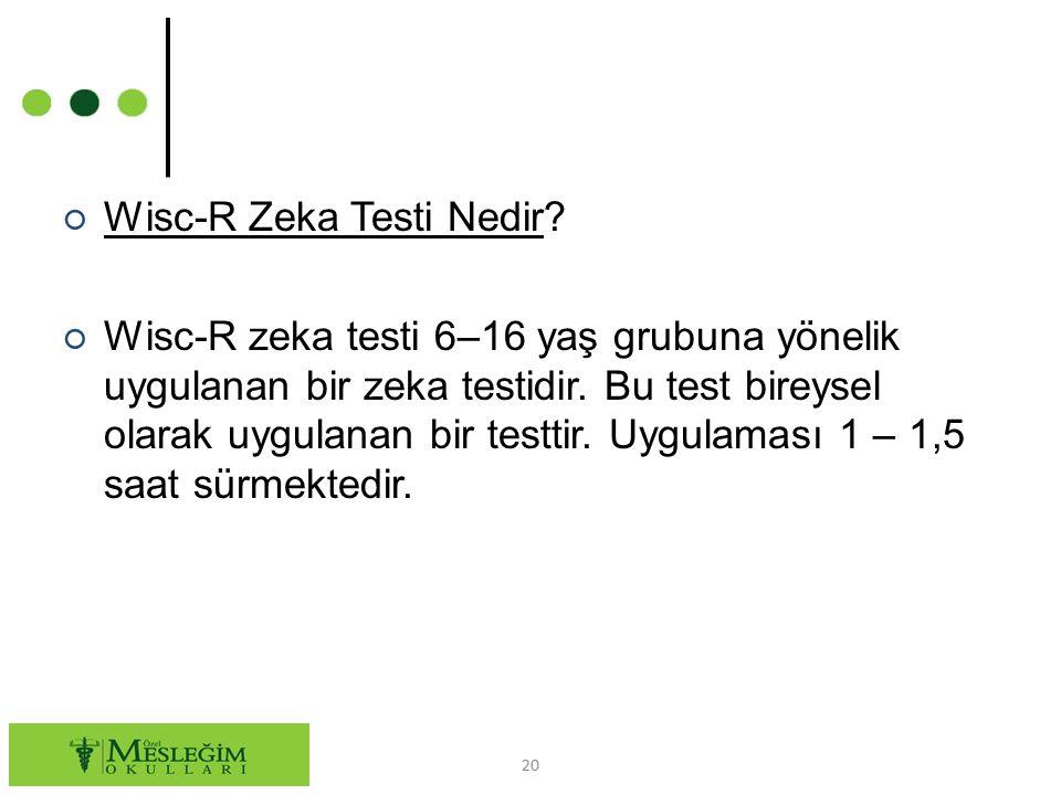 Wisc-R Zeka Testi Nedir