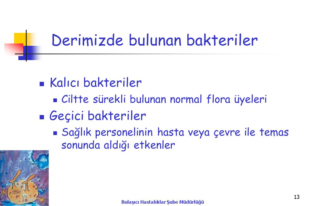 Derimizde bulunan bakteriler